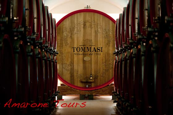 tommasi winery barrel
