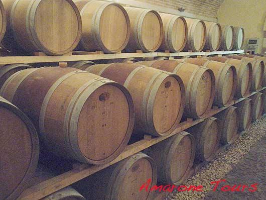 French oak barriques