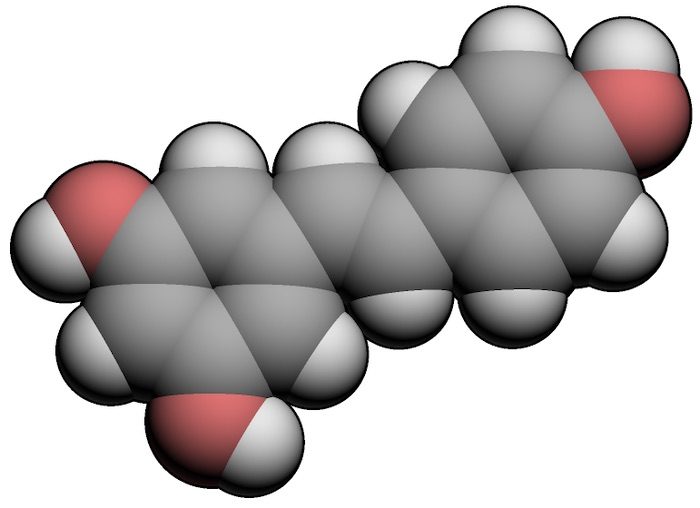 3D model of a molecule of resveratrol