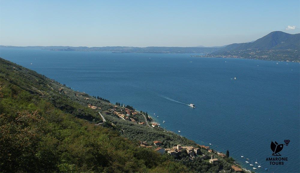 Lake Garda, vineyards and olive groves
