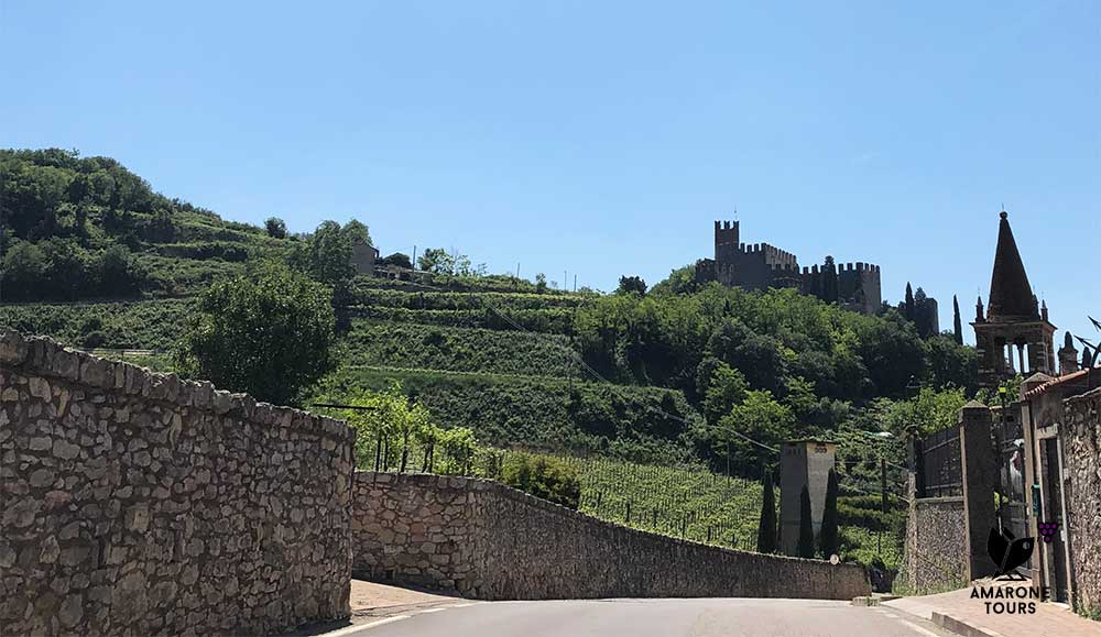 Soave castle and vineyards