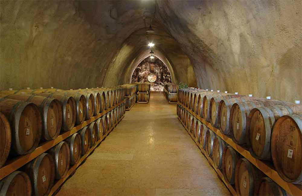 cellar in Soave
